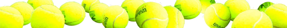 Tennis Membership Fees