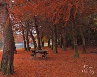 Southern AutumnExplore